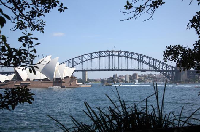 Private Sydney Half-Day Sightseeing Tour Including Sydney Opera House Harbour Bridge and Bondi Beach