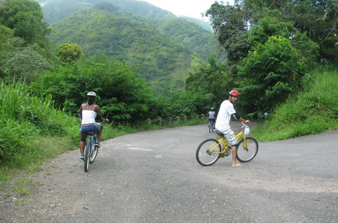 Blue mountain bicycle tour from kingston in kingston 215060