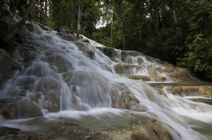 Dunn's River Falls and Fern Gully Adventure Tour from Montego Bay