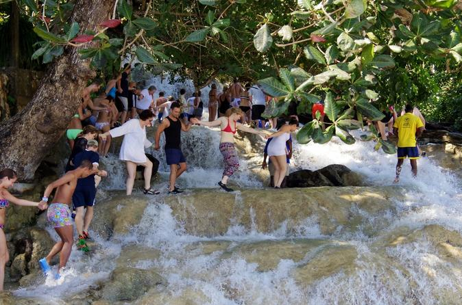 Dunn's River Falls and Fern Gully Highlight Adventure Tour from Falmouth