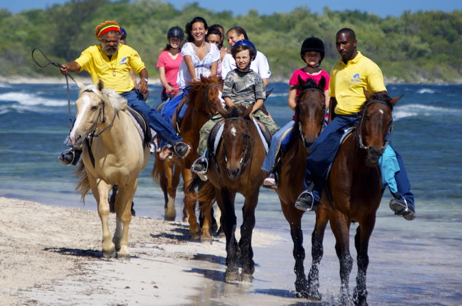 Falmouth Shore Excursion: Braco Stables Horseback Ride and Swim