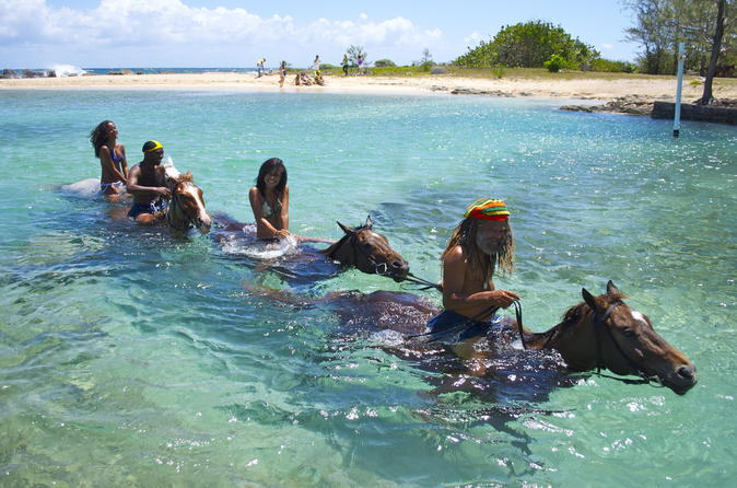 Jamaica Zipline And Horseback Ride N Swim Adventure Tour From Ocho Rios