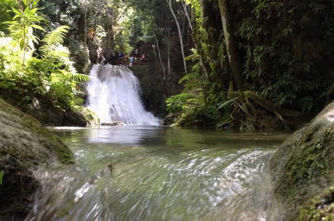 Private Fern Gully, Blue Hole and Bamboo Blu Beach Experience from Ocho Rios