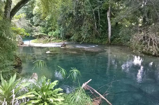 Private tour blue hole and fern gully rain forest adventure from in negril 246762