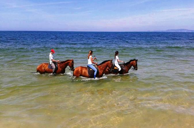 Horse Riding in Comporta