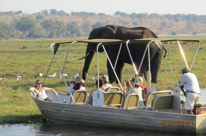 Chobe Day Trip From Victoria Falls
