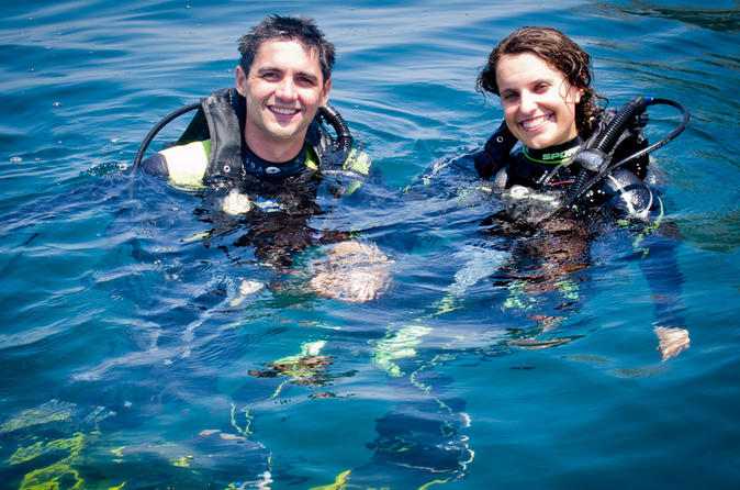 Full day diving for beginners at coiba national park in santa catalina 217410