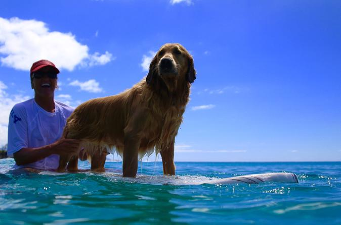 Surf Lessons on the North Shore of Oahu