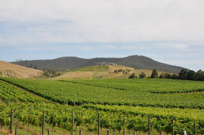 Private Yarra Valley Day Trip from Melbourne