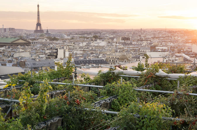 Secret garden over Paris at Galeries Lafayette