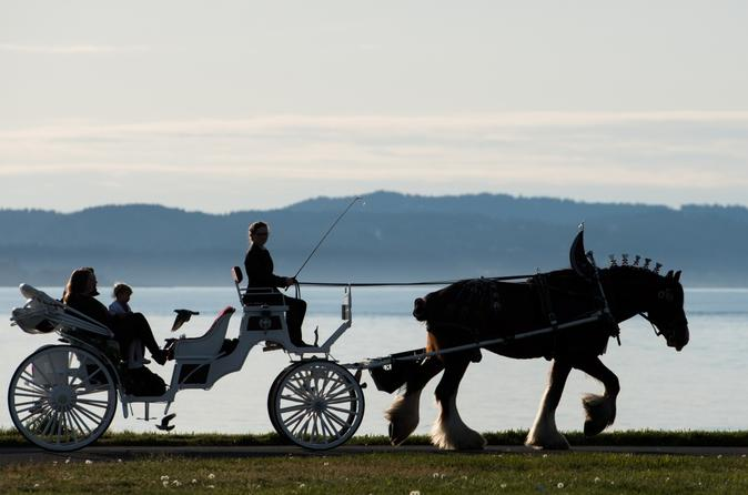 75-Minute Grand Horse-Drawn Carriage Tour - Victoria