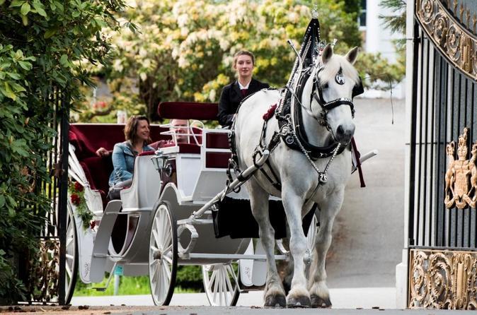 90-Minute Premier Horse-Drawn Carriage Tour - Victoria