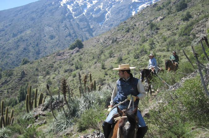 Horse Riding Tour in the Andes Foothills with Picnic
