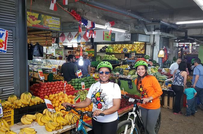 Private Full-Day Bike Tour of Santiago