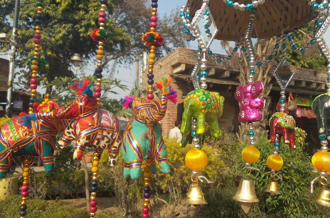 Colorful Old Delhi Walking Tour