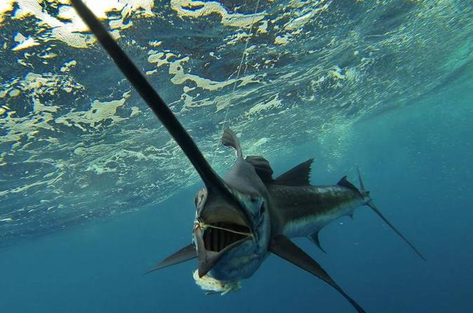 Four-Hour Fishing Tour in Dominica