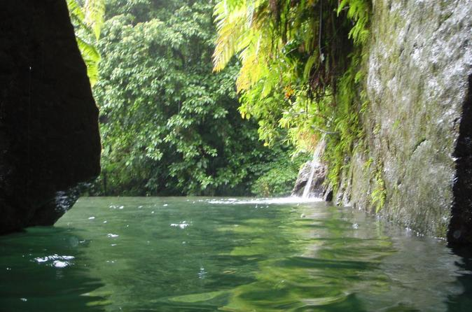 Middleham Falls and Ti'tou Gorge Half-Day Excursion