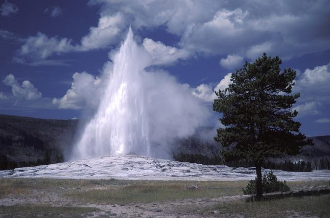 2-Day Yellowstone National Park from Jackson with Upper and Lower Loop