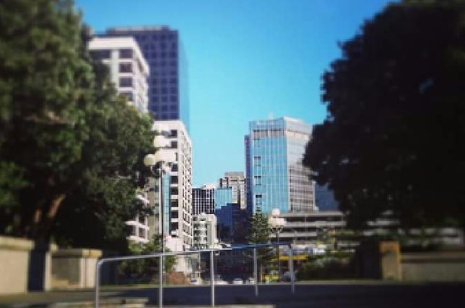 Wellington central city walking tour in wellington 210929