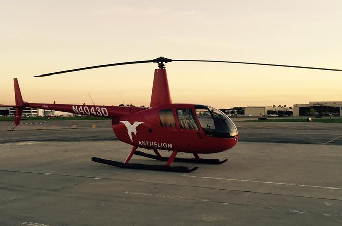 Private Helicopter Tour of Downtown Los Angeles from Long Beach