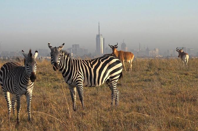 EARLY MORNING HALF DAY TOUR TO NAIROBI NATIONAL PARK