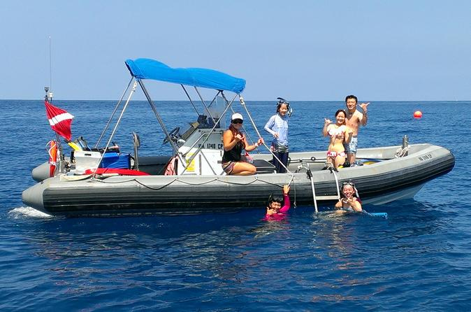 Private Charter: Kealakekua Bay Snorkel and Wild Dolphin Swim