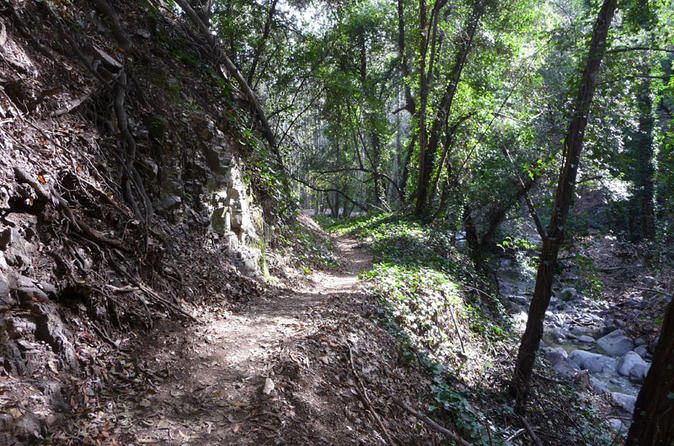 Private Half-Day Mountain Bike Tour Near Los Angeles