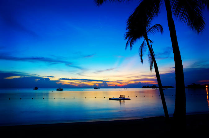 Private Negril Highlights Tour from Montego Bay