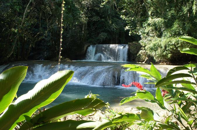 Private ys falls tour from montego bay in montego bay 296734