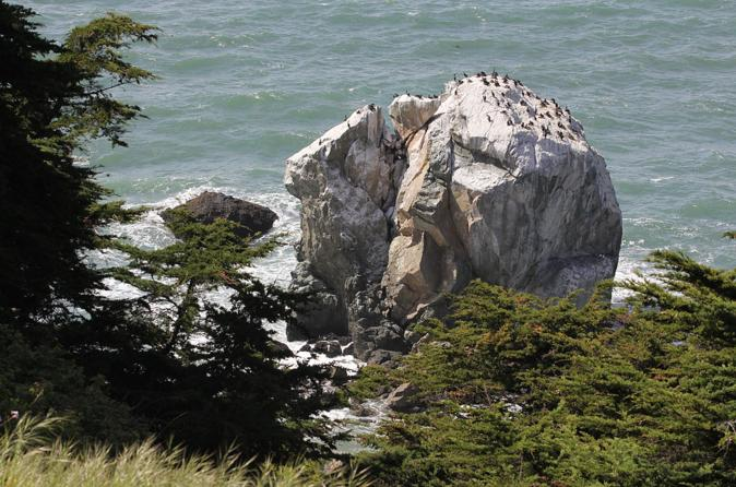 4-hour Walking Tour of Lands End in San Francisco