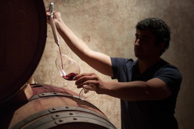 Excursões a vinícolas boutique e degustações, saindo de Mendoza