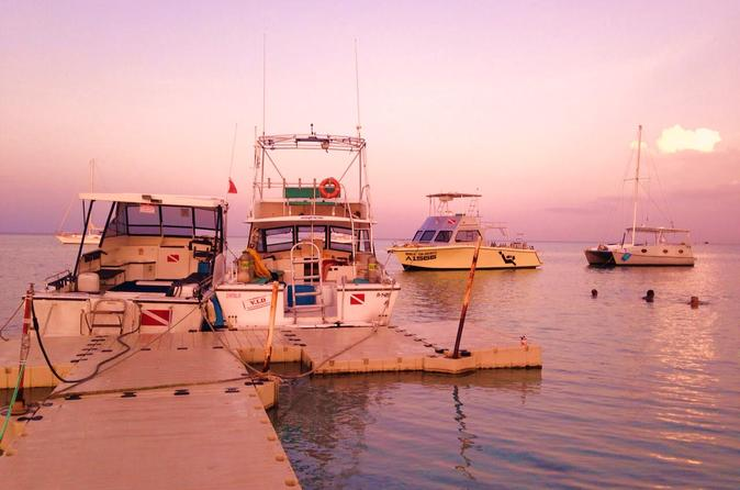 South Aruba 1-Tank Dive Experience