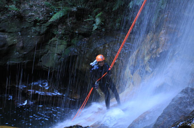 Private Blue Mountains Abseiling and Canyoning Day Trip from Sydney