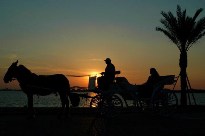 Explore Luxor City by Horse Carriage