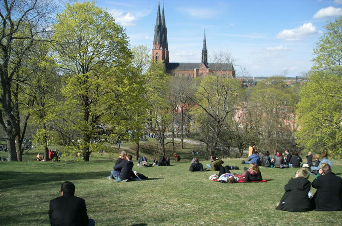 Swedish lifestyle and private walking tour of uppsala in uppsala 243001