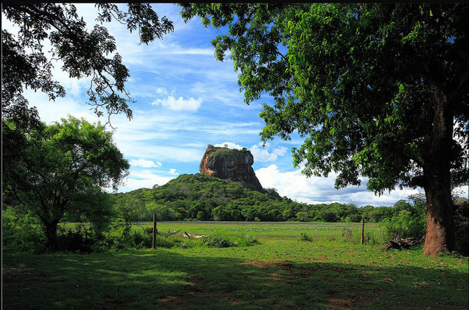 Private Day Tour: Sigiriya Rock and Dambulla Cave Temple Tour from Colombo