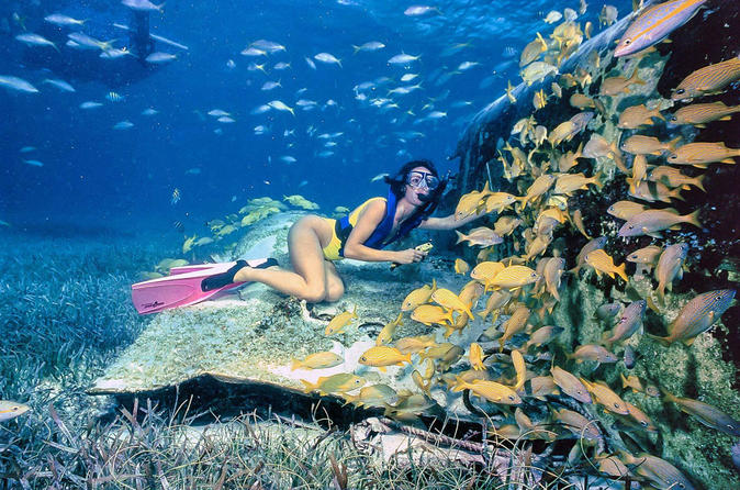 Private Half-Day Snorkeling Charter in Nassau