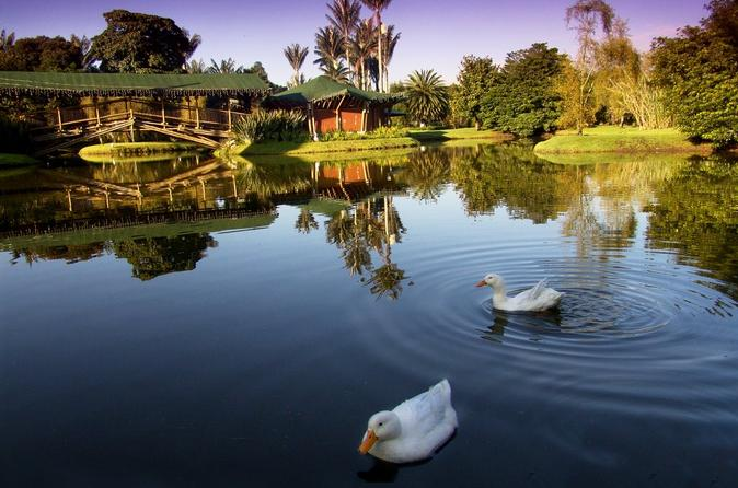 Private Tour: Botanical Garden José Celestino Mutis of Bogotá