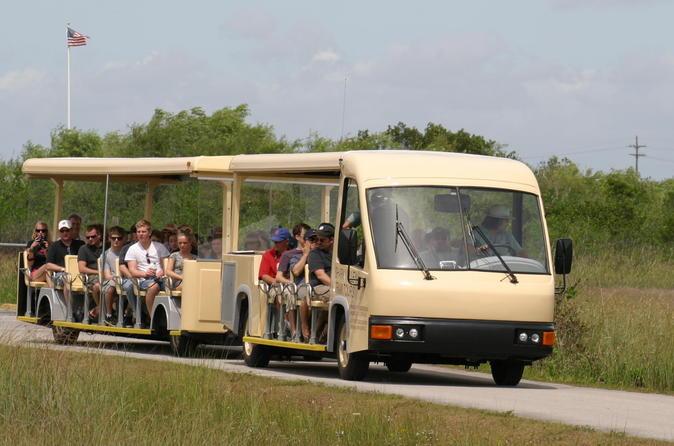 Excursão guiada de bonde ao Shark Valley Everglades