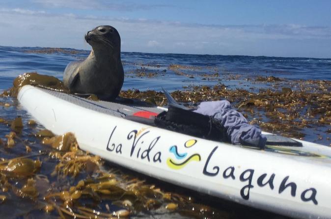 Laguna beach sup lesson and tour in laguna beach 281837