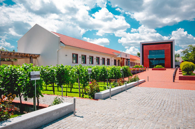 Full-Day Shabo Wine Culture Center Private Tour With Tasting In Odessa