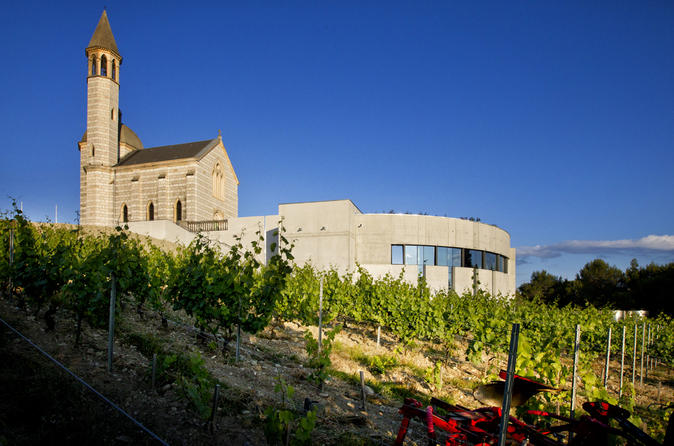 Electric Bike Tour and Wine Tasting from Nice