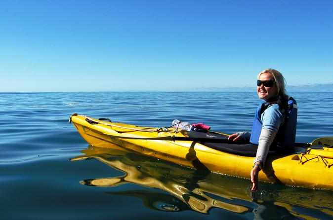 Full day astrolabe kayaking eco tour in nelson 243759