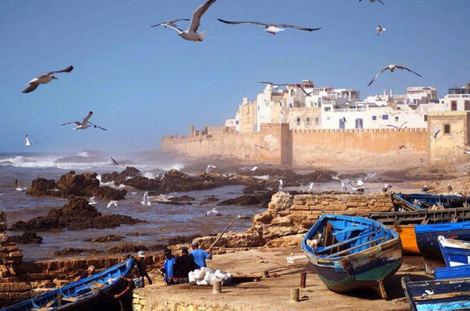 Premium Day Tour To Essaouira From Marrakech - Marrakesh