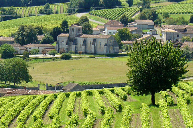 A day visiting traditional distilleries in the heart of the vineyards in cognac 220928