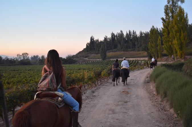 Excursão vinícola a cavalo e Country Grill do país saindo de Santiago