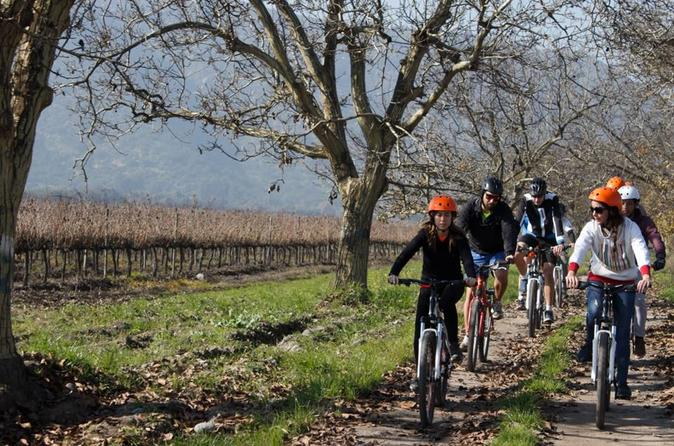 Full-Day Private Maipo Valley Bike Tour and Wine Tasting from Santiago