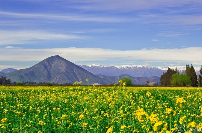 Wine Trekking Tour Including Chilean Country Grill