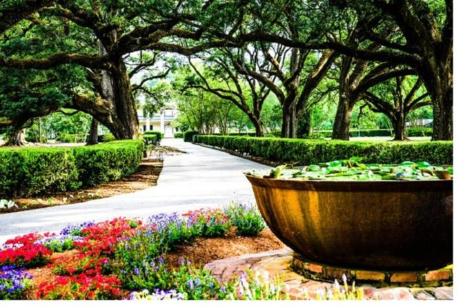 The 10 Best Garden District Tours Trips Tickets New Orleans