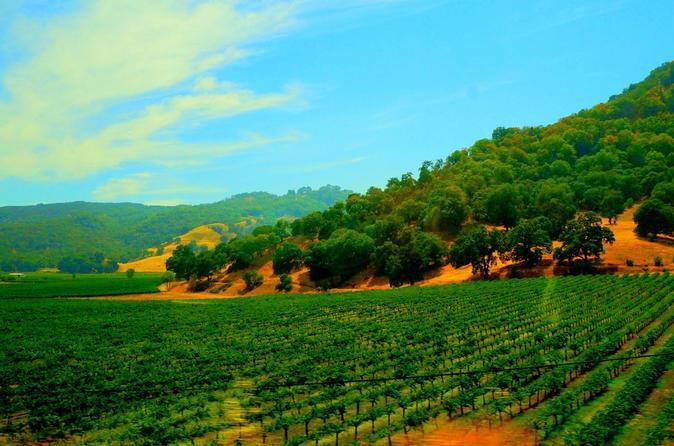 Excursão na propriedade vinícola de Napa e Sonoma Valley, saindo de São Francisco
